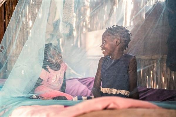 En Afrique subsaharienne, le paludisme tuera plus de personnes que le coronavirus, prévient l'OMS