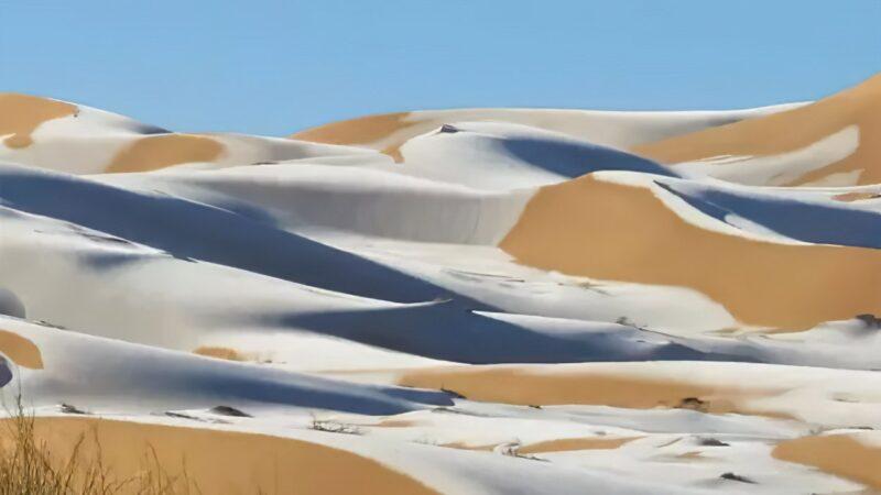 Il a neigé aux portes du Sahara en Algérie
