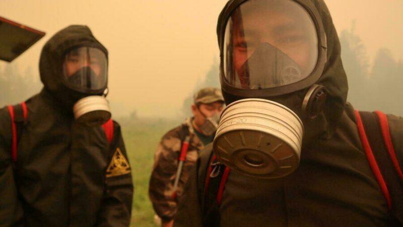 Vague de chaleur sans précédent en Sibérie, Greenpeace s'alarme