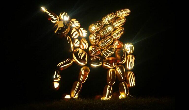 Comment fonctionne Pegasus et comment le détecter ?